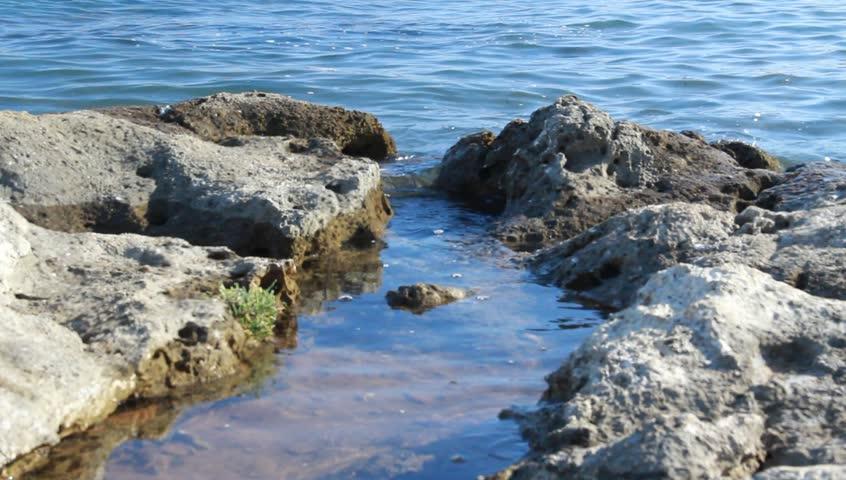 Waves on the summer beach. | Shutterstock HD Video #2529407