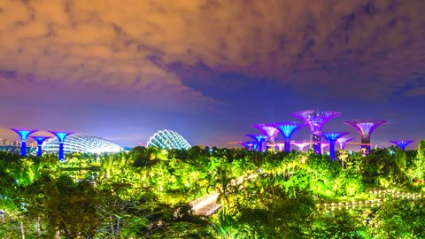 4K. Time lapse view of Supertree Singapore City