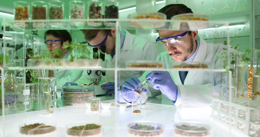Researchers Examining Soil Seeds Plants Biochemists Research Laboratory Tests