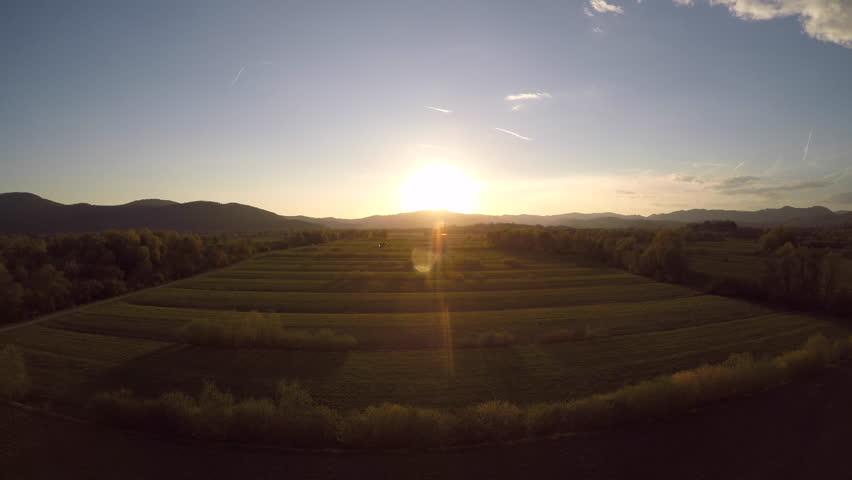 4K: Aerial flight over a marsh land at sunset