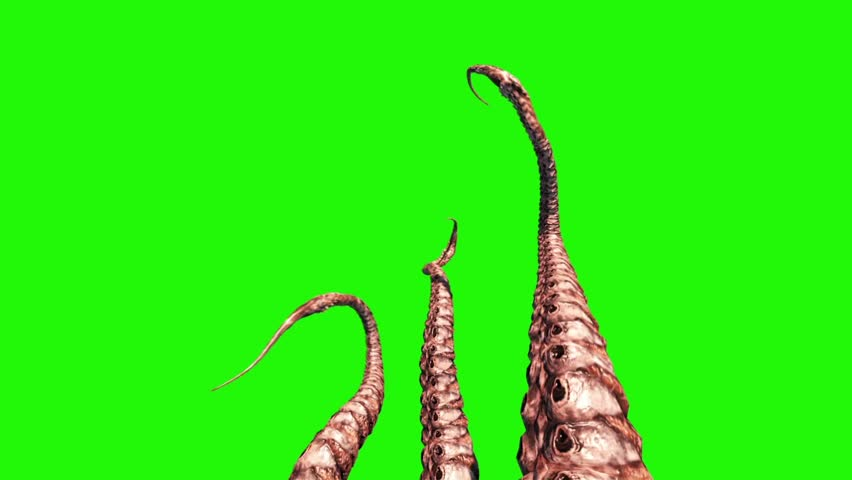 4 Tentacles Monster Octopus Green Screen 3D Rendering Animation