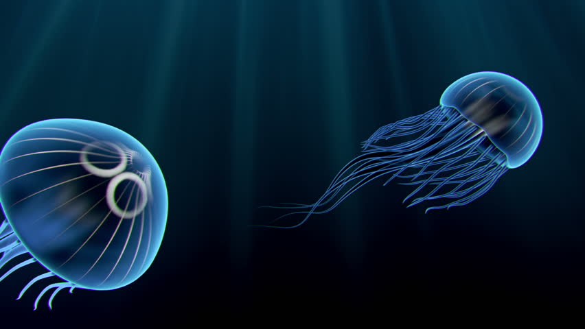 Two animated blue jellyfish swimming gracefully though the water.
