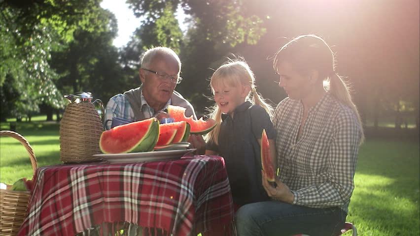 Senior man, woman and girl having a picnic