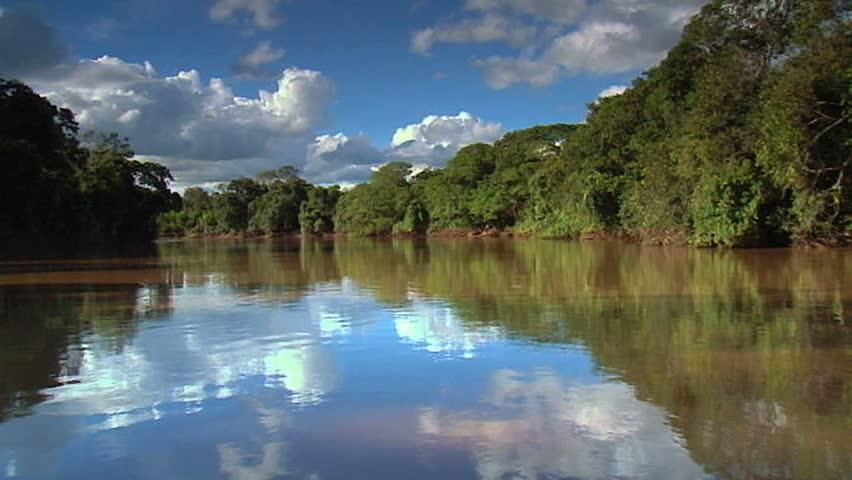 River in Pantanal, Brazil