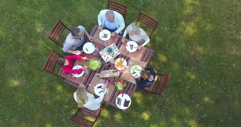 Aerial view of family having summer lunch in yard