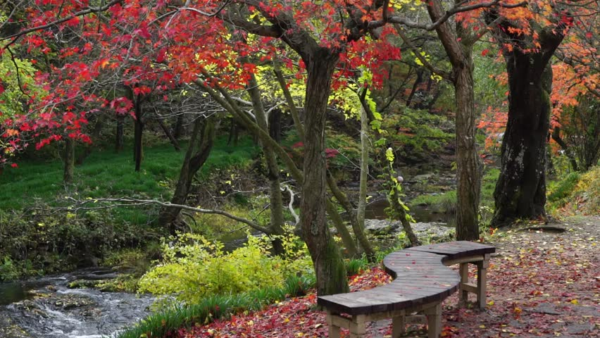 Gochang Seonunsa temple and shrine taken early autumn, October 2015. | Shutterstock HD Video #26809747