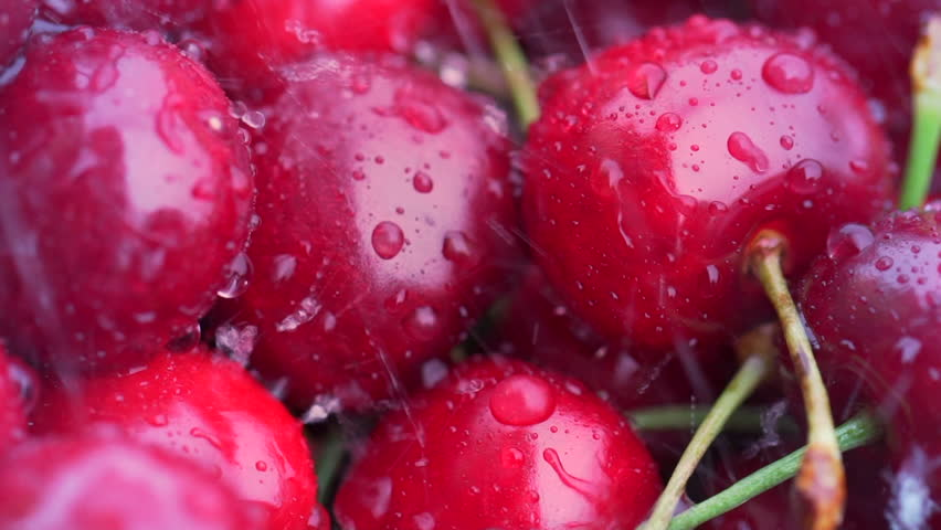 Overhead macro shot of group of red cherries washed with water or rain. Fresh fruit in slow motion.