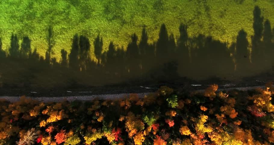 Lake Michigan Shore Treeline Shadows Aerial from Drone