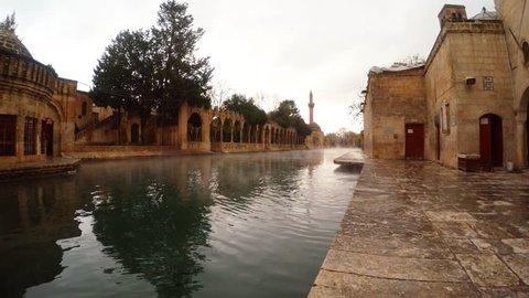the Legendary Pool of Sacred Fish (Balikligol) Where Abraham Was Thrown Into the Fire by Nimrod. the Pool is in the Courtyard of the Mosque of Halil-Ur-Rahman, Built by the Ayyubids in 1211 and Now