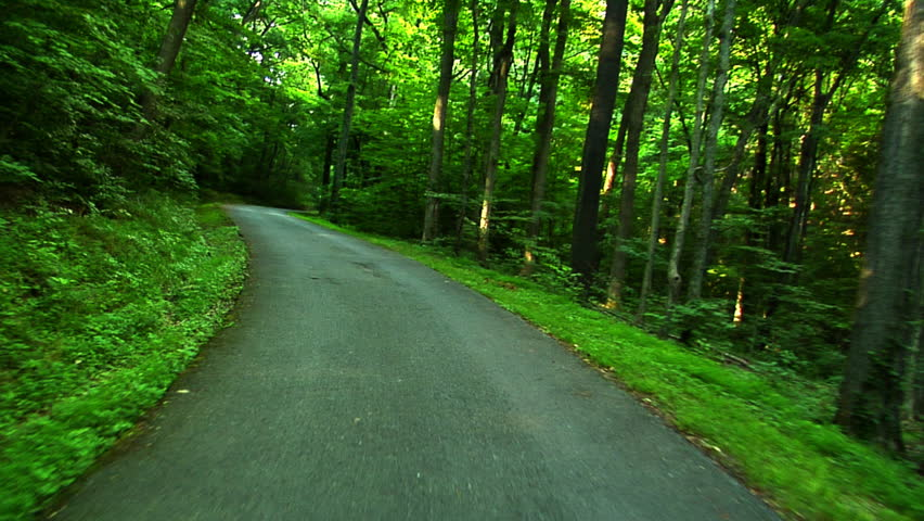 A POV shot of a car going down a rural road lined with trees 1080 HD video | Shutterstock HD Video #2709587