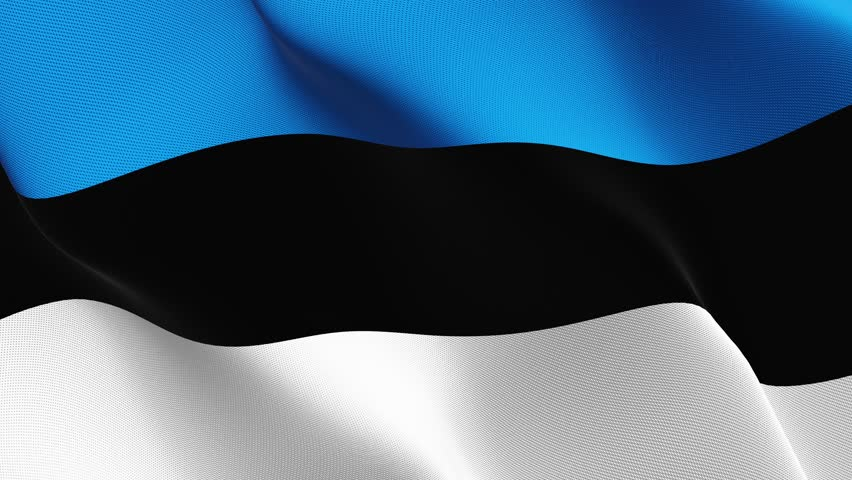 Estonia flag waving seamless loop in 4K and 30fps. Estonian loopable flag with highly detailed fabric texture. | Shutterstock HD Video #27151594