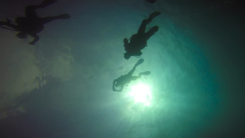 Beginning scuba dive.  Exciting diving in the Indian ocean off the island of Mafia. Tanzania. | Shutterstock HD Video #27239857