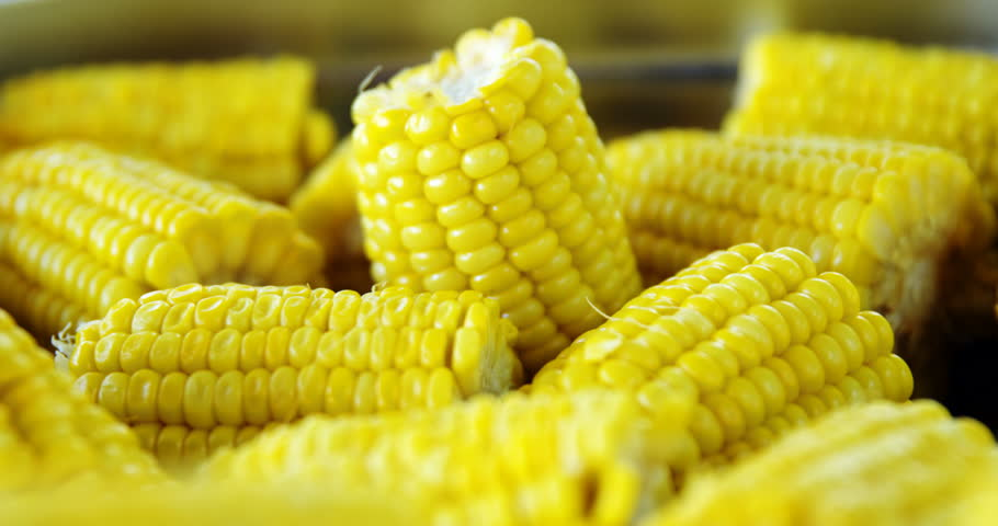 Boiled corn cob stock footage video 2624273 shutterstock close up of fresh corns in school canteen 4k stock footage clip ccuart Choice Image