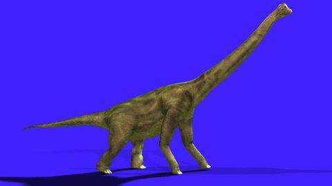 sauropod dinosaur walking