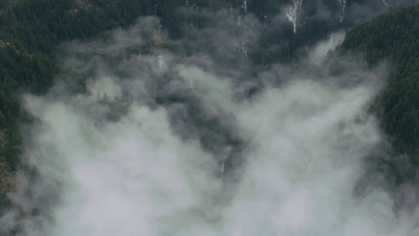 Aerial view of fog and trees in winter, Columbia River Gorge, Oregon   Shutterstock HD Video #27593797
