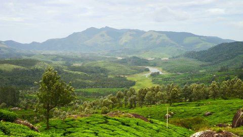 Kerala, India. Tea plantations in Munnar, Kerala in India with cloudy sky and Western Ghats mountain range at the background. Time-lapse of green forest during the day