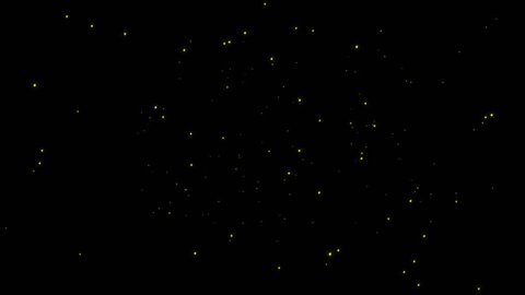 Looping Swarm of Sparse Isolated Fireflies At Night