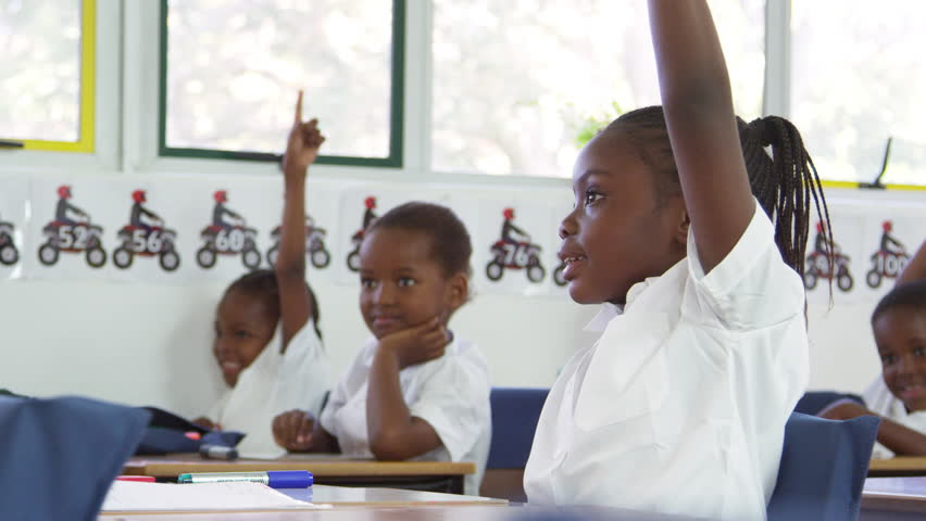 Schoolgirl raising hand during a lesson at elementary school | Shutterstock HD Video #28049497