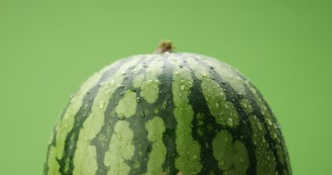 watermelon covered by drops of water rotating on green background Studio footage