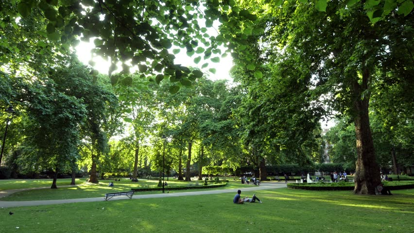 Russell Square London. Backlit Park Scene. Backlit tree, grass and people in a park. Could be anywhere but is Russell Square in central London.