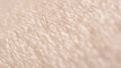 CLOSE UP MACRO DOF: Detail of dry Caucasian skin. Shaved woman's legs. Dry skin after depilation and waxing. Hairless skin pattern