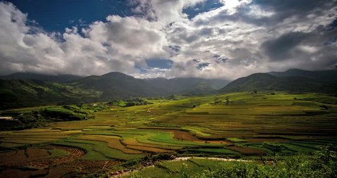 Time lapse video Rice field in Mu CANG CHAI valley, YEN BAI, Vietnam