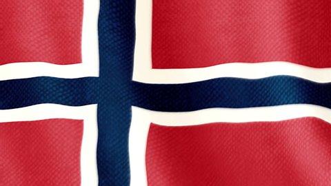 Norwegian flag waving animation