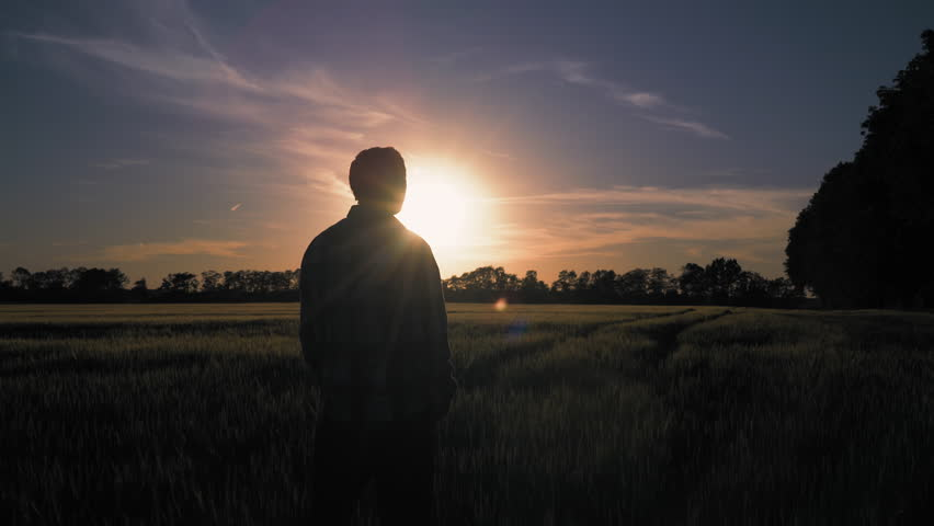 Silhouette male standing at the meadow. Rear back view man alone enjoy nature and freedom at the countryside. Natural landscape at sunset glow. Amazing sky with setting sun | Shutterstock HD Video #28847377