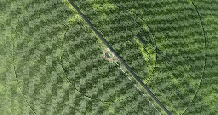 High aerial view of irrigation patterns in corn field | Shutterstock HD Video #28855957