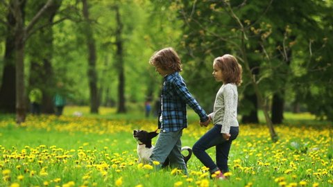 A boy and a girl are walking with a dog in the park. Couple holding hands. The boy holds the dog by the leash. Brother and sister. Spring Break. Glade of dandelions. School age. First love