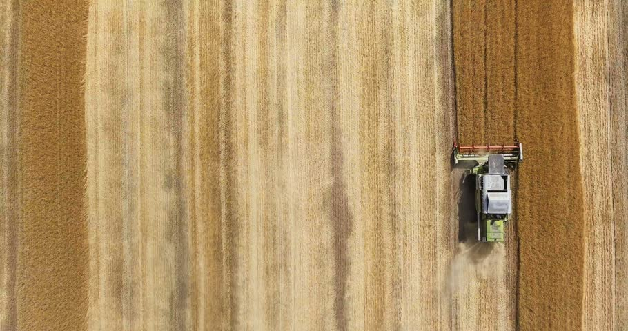 Aerial view of modern combine harvesting wheat on the field. Flying directly above combine. Top view. Agriculture scene. | Shutterstock HD Video #29127337