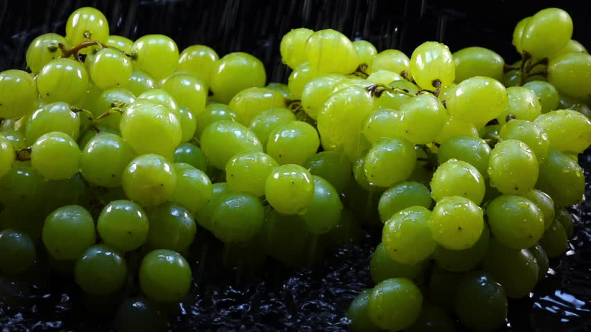 Amazing shower for fresh green grapes in bunches, laying in shallow water on black background in back-light. Excellent slow motion for vibrant intro in HD. Shooting with high-speed, 240fps, camera. | Shutterstock HD Video #29500297