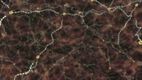 Video of damage to myelin sheath caused by multiple sclerosis, close up of inflammation on one neuron and action potential disruption of conduction due to the scarring