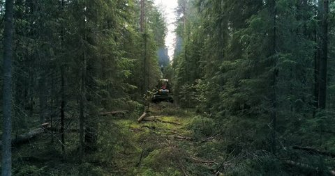 A machine is riding through the forest picking up felled trees