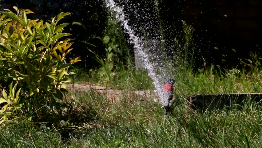 Drops in a strong stream of water from a garden sprayer when watering a lawn | Shutterstock HD Video #29907487