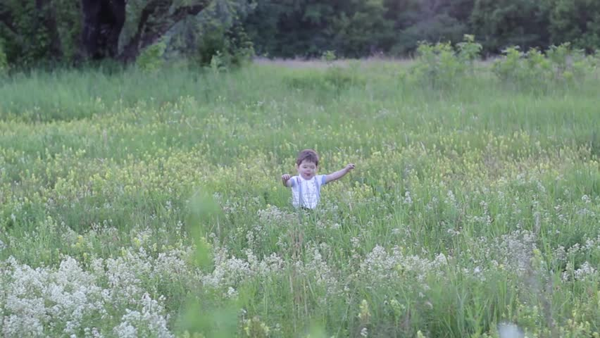 Little boy walks field | Shutterstock HD Video #29960677