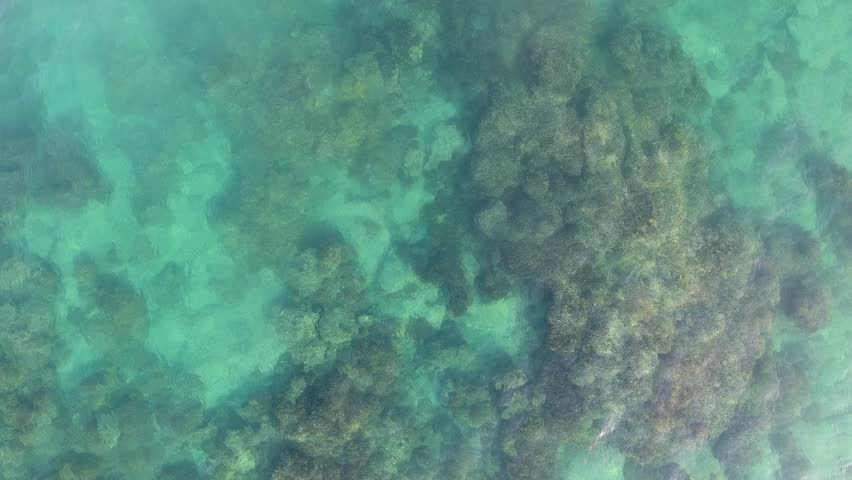 Aerial views from the beach and reef of Cabo Pulmo, Mexico. #30003427