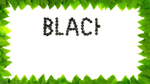 Blackcurrant font, alphabet. Fruit letters. Words are made up of natural fresh organic berries of black currant on a white background with a frame of green leaves. 4K stop motion animation