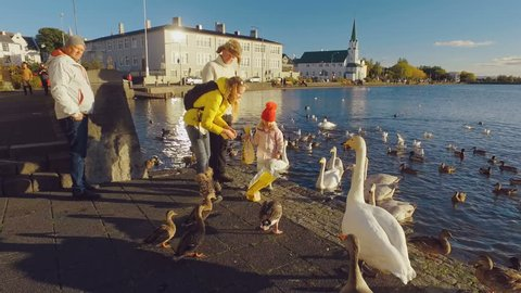 Reykjavik, Iceland - SEP, 2016: young family with little daughter is feeding birds on a lake in a european city in sunny weather