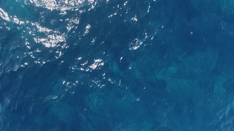 Overhead shot of crystal clear water sea in summer, Costa Smeralda, Sardinia, Italy. Turquoise water.