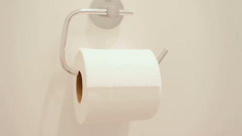 Roll of bathroom toilet paper waiving in breeze