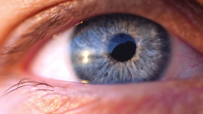 Extreme macro shot of opening of a blue eye of young man in slow motion. 1920x1080 #30656647