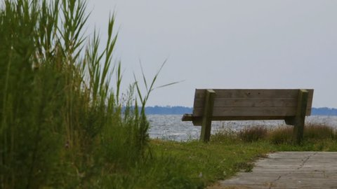 Empty Bench on Water