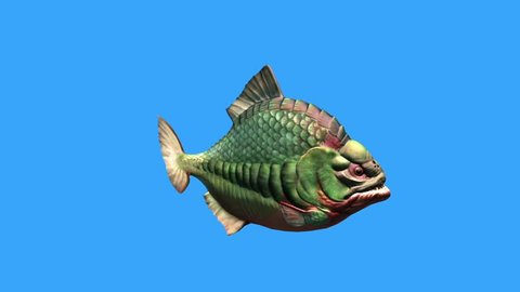 Fish Piranha Fast Swim Blue Screen 3D Rendering Animation