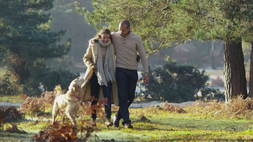 A young couple in love stroll together through a beautiful forest with their pet dog. In slow motion. | Shutterstock HD Video #3105154