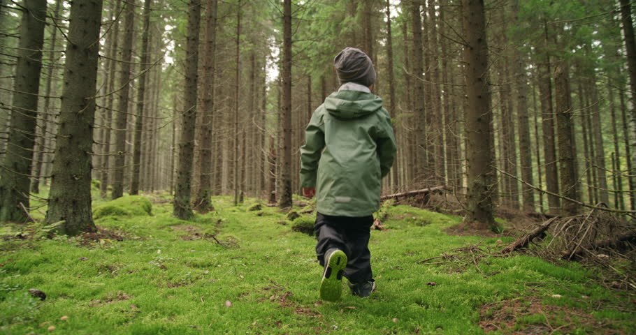 Following a boy walking in a forest, gimbal shot