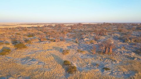 Aerial shot of dry rocky outcrop strewn with baobab trees