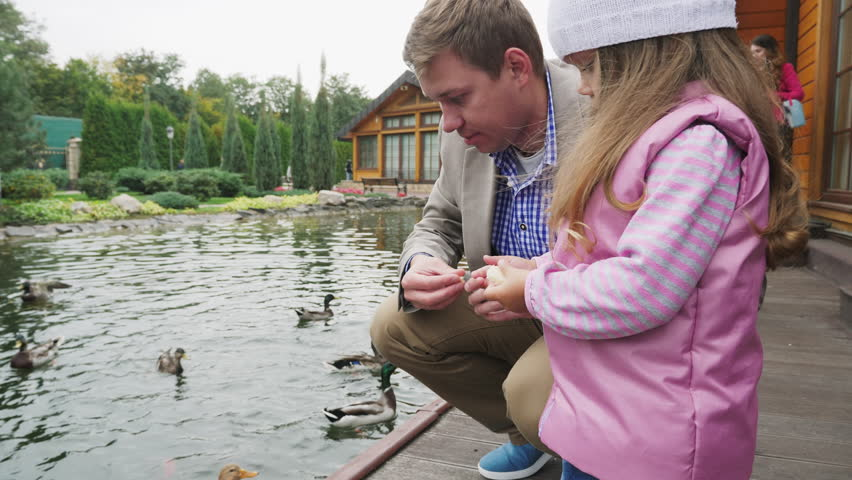 Feeding the ducks in the lake. Father and daughter are fed ducks in a city park by the lake