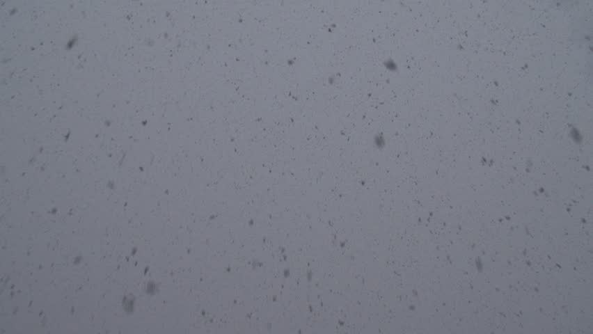 Big snowflakes falling from the sky