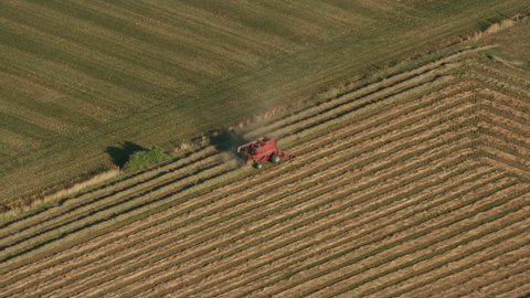 Salem, Oregon circa-2017, Aerial view of combine in field. Shot with Cineflex and RED Epic-W Helium.